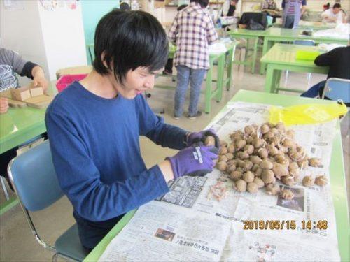 写真:自主製品(野菜)